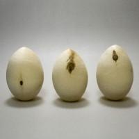 Яйцо 9 см с уценкой